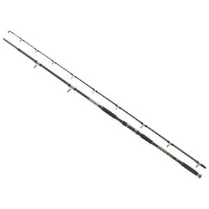 Lanseta Jaxon Antris HTI Catfish, 2.85m, 500g